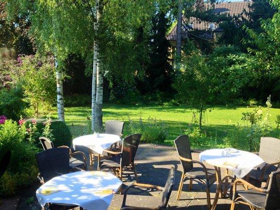 Villa Arborea : Vista sul giardino