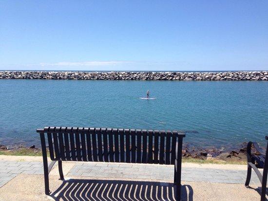 Dana Point Harbor: Там вдалеке вполне могут показаться спинки серых калифорнийских китов