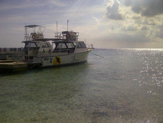 Hilton Curacao: Área de la playa que colinda con el Hotel Marriot