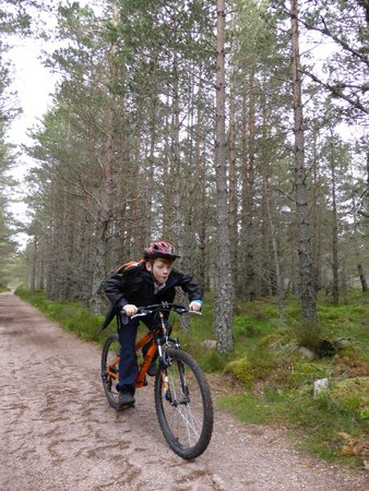 Fraoch Lodge: Cycling through the Scottish forests will wear out even the most energetic kids !
