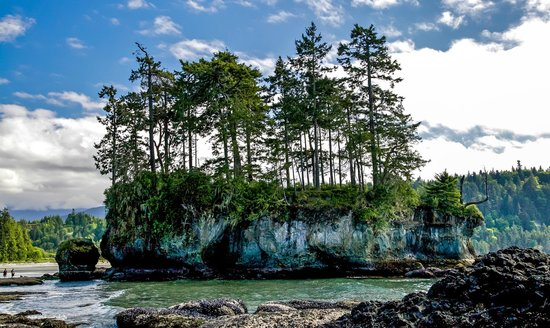 Rugged Coastline of the Olympic Peninsula - Picture of ...