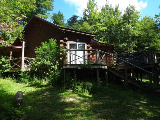 Wonderful Springwood Cabins: View From Side Of Butterfly Trail Cabin