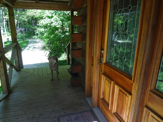 Captivating Springwood Cabins: Front Door And Porch