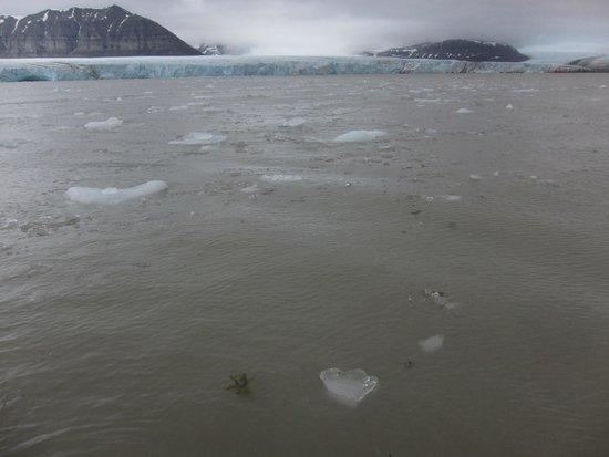 Spitsbergen, Norwegen: getting closer