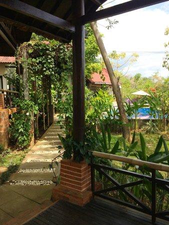 Lovina Eco Lodge: Вид из номера