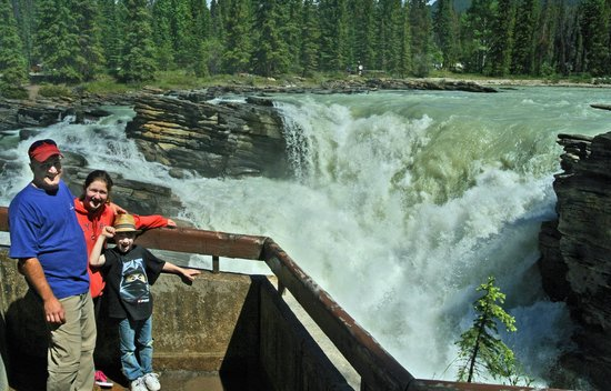 Athabasca Falls : Great view point.