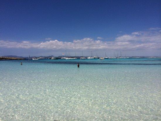 Intertur Hotel Miami Ibiza : Formentera