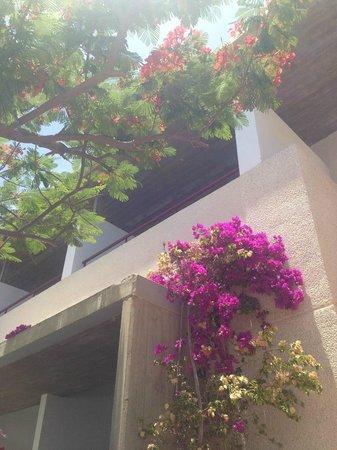 Hotel Costa Calero : Our balcony