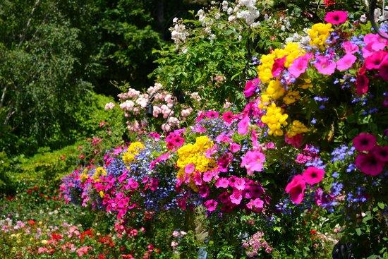 The Butchart Gardens: SUMMER BASKETS