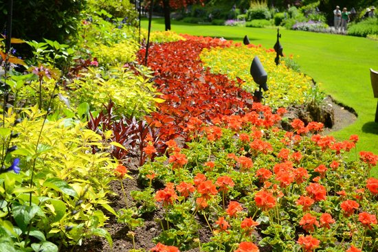 Butchart Gardens: SUMMER BORDERS