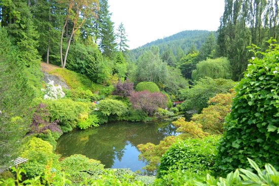 The Butchart Gardens: POND MAIN GARDEN