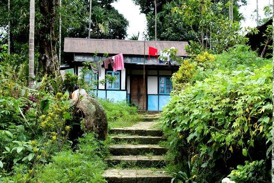 Mawlynnong Waterfall: Village house