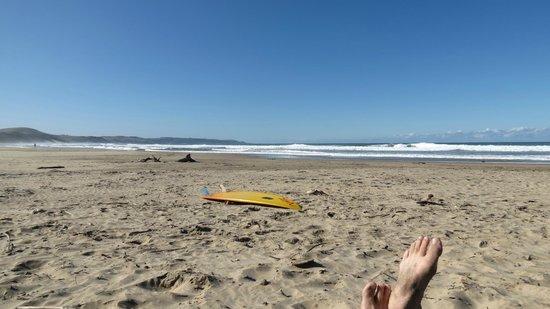 Buccaneers Lodge & Backpackers: Beachfront