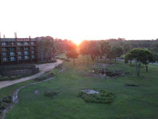 Disney's Animal Kingdom Lodge : Sunrise