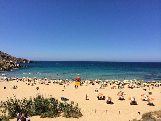 Golden Sands Beach: Panorama
