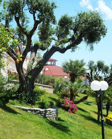 Villa Foti Melito Porto Salvo