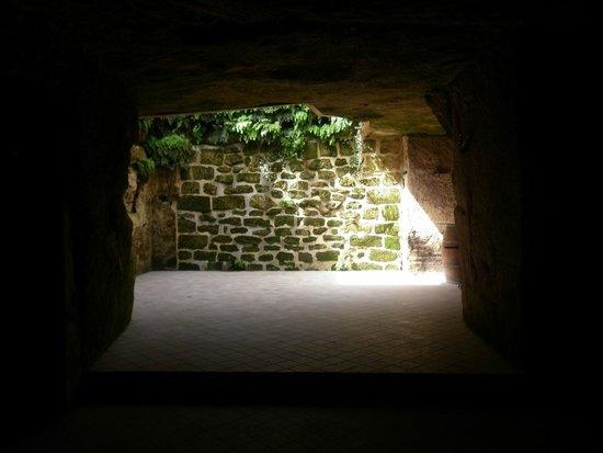 puits de jour dans la cave picture of chateau rochebelle saint emilion tripadvisor. Black Bedroom Furniture Sets. Home Design Ideas