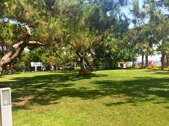 Akka Antedon Hotel: garden again