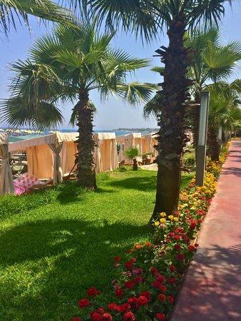 Akka Antedon Hotel: the beach