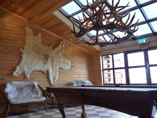 Hotel Ranga : Lounge