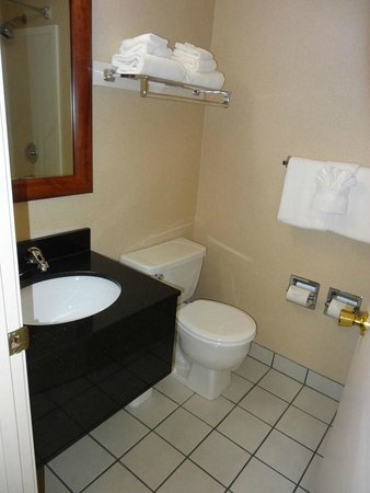 BEST WESTERN Cascadia Inn: Bathroom had a sink and there was one outside the bathroom too.