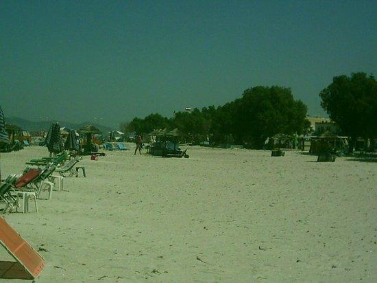Cirillo Family Hotel Christina Apartments: Mastihari Beach