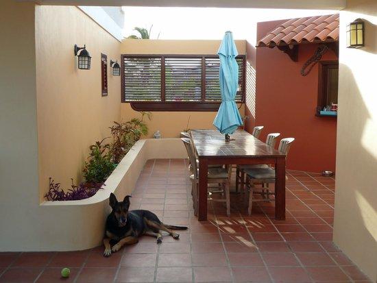 Villa Safir: Dining area
