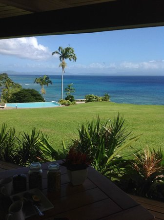 Taveuni Island Resort & Spa: View from dining room