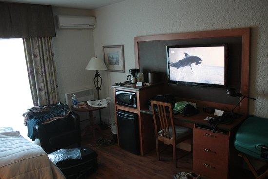 Hotel L'Oiseliere - Montmagny : Chambre 207