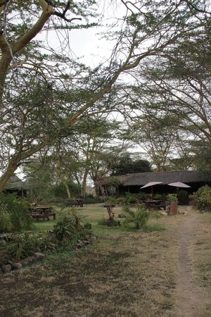Swara Plains Acacia Camp: Hotel grounds