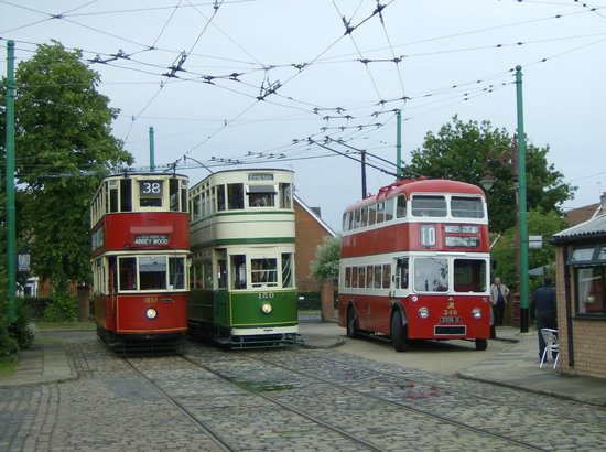 East Anglia Transport Museum: Picture of some of the trams and a trolleybus
