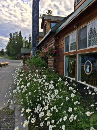 Summit Lake Lodge: Flowers at the lodge