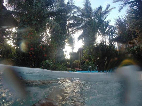 Pousada Vila Bela Vista : view from the pool