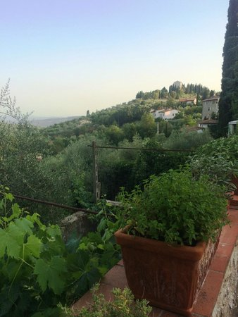 Borgo Lecchi B&B : View from our terrace
