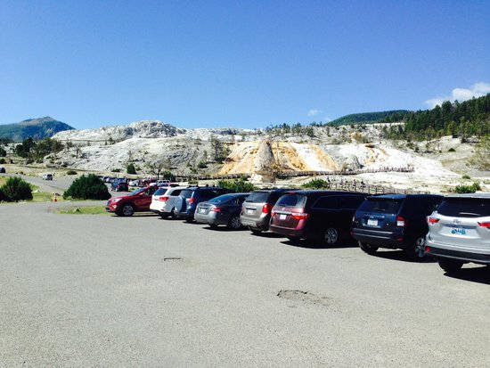 Mammoth Hot Springs Hotel & Cabins: From the parking lot.  We were lucky to get this close.