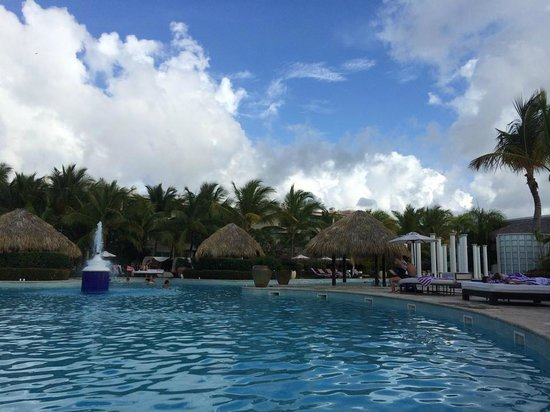 The Reserve at Paradisus Punta Cana: Private pool in the Reserve