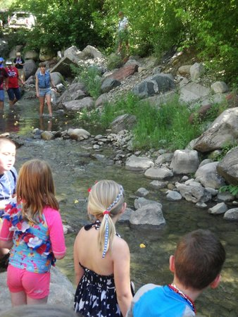 Lightner Creek Campground: Duck Race