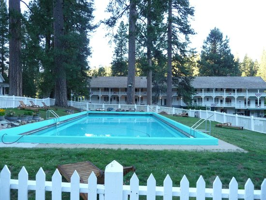 Big Trees Lodge: swimming tank
