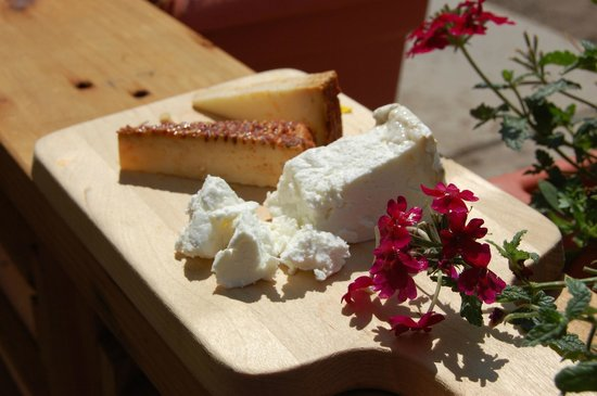 Ploughboy inc. : small-batch goat cheese from Buena Vista, CO