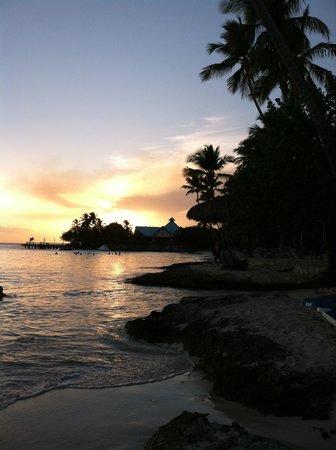Dreams La Romana Resort & Spa : Incredibly Beautiful Velvet Sand Beach