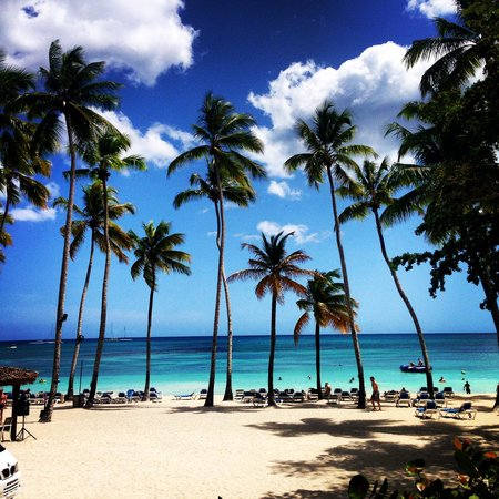 Dreams La Romana Resort & Spa : Goregous Beach