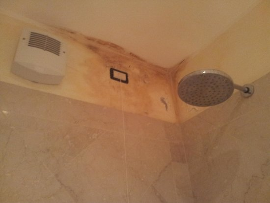 Borgo Machetto: Damp stains on the shower ceiling