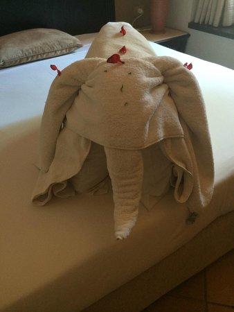 Steigenberger Coraya Beach : Towel art every day - my fave!