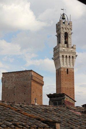 Palazzo Fani Mignanelli : Torre del Mangia