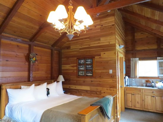 Paradise Lodge & Bungalows: Cabin interior