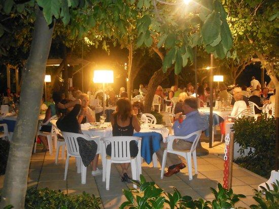 Alexandra Plaza: Cena del saluto in giardino