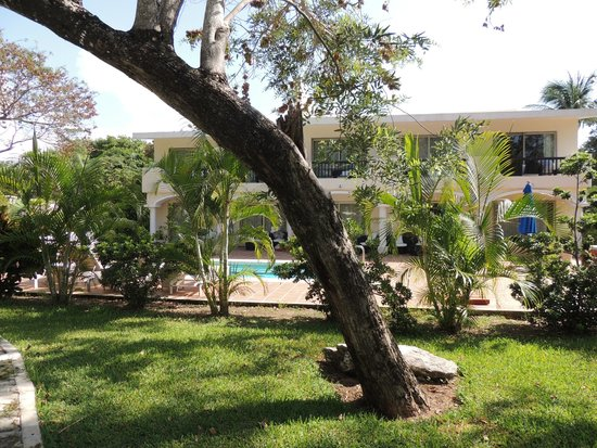 Sandos Playacar Beach Resort : alrededores del hotel