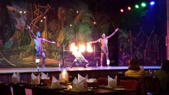 Safari Park Hotel: Espetáculo