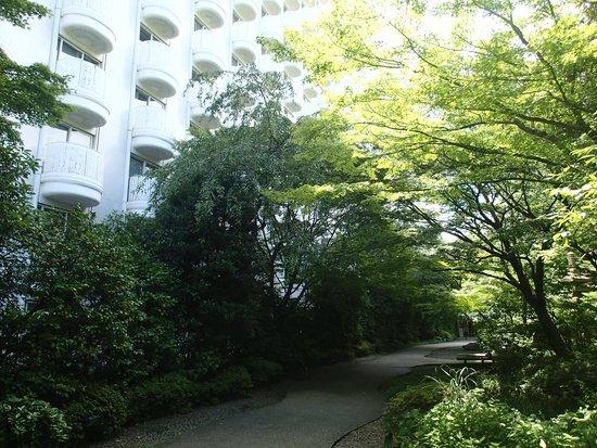 Grand Prince Hotel New Takanawa : Bien ombragé ...
