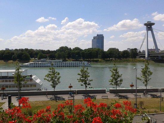Hotel Devin: The Danube